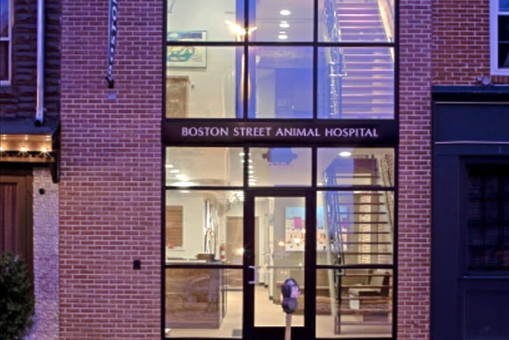 Boston Street Animal Hospital