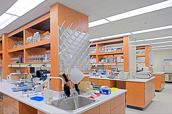 University of Maryland at Baltimore, School of Medicine, MSTF Lab Spaces
